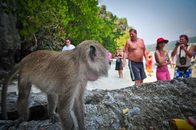 Day5-PhiPhi Monkey Beach