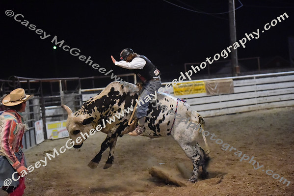 JR Mini Broncs and Bulls - Emmett  9/9/17