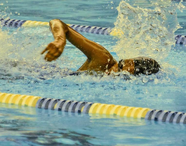 Swim Meet 11-09-13 (72 of 1544).jpg