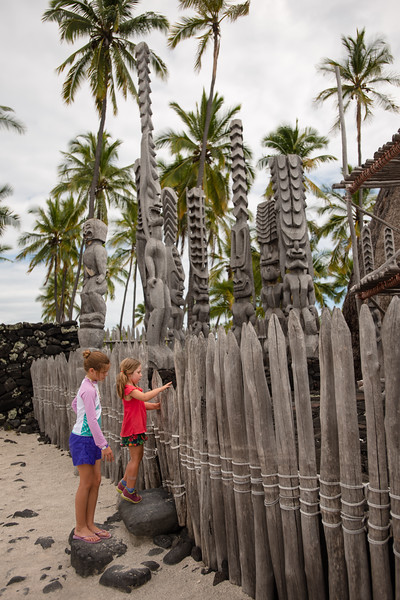 Hawaii2019-347.jpg