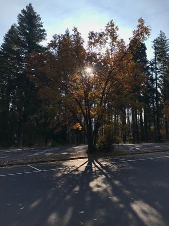 Valley fall color in Nov