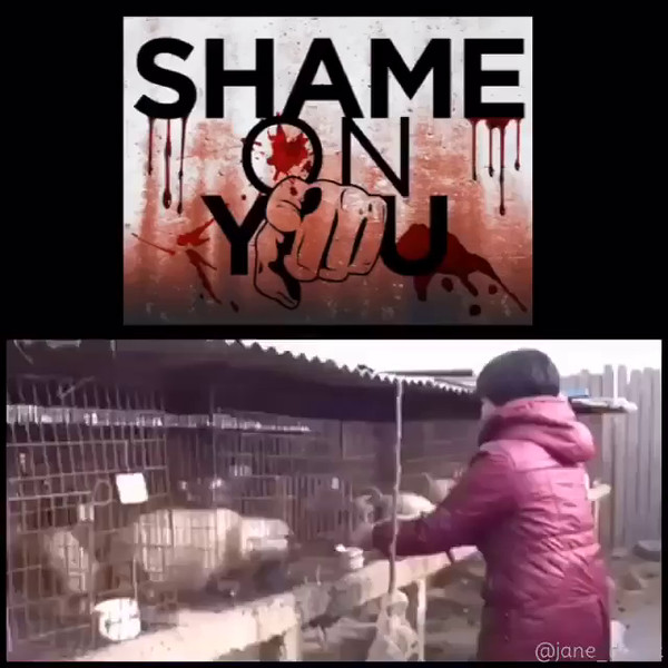 Shame_on_anyone_who_wears_fur._Full_coat_or_trim__new_or_vintage_there_is_no_justification_for_it._You_buy_fur__you_pay_for_animals_to_be_beatenstomped_to_death__painfully_gassed_to_death__anally_and_vaginally_electrocuted_and_skinned_alive._Their_to.mp4
