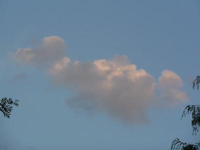Ciels - Nuages - Cumulus