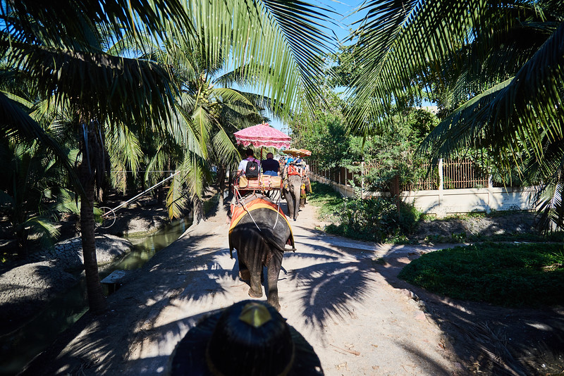Trip to Bangkok Thailand (273).jpg