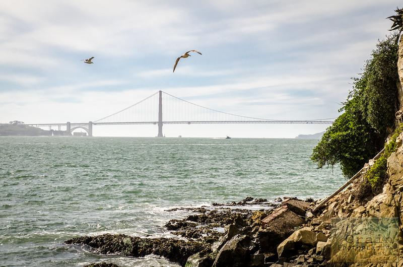 20141016_Alcatraz_0192.jpg