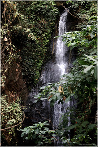 The 2nd Waterfall Excursion