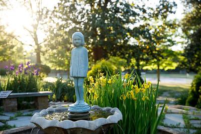 Curtis' Garden