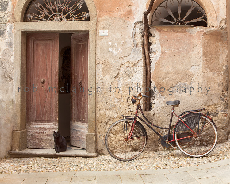 $125 - Cat, Bike, and Vine , Monterosso al Mare , Cinque Terre