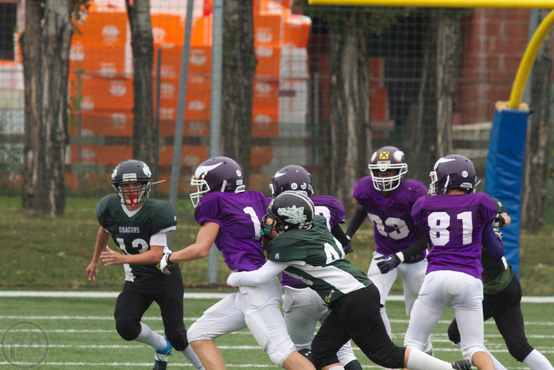 2013; AFBÖ; American Football; Danube Dragons; Vienna Vikings; U13; Youth