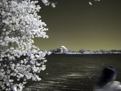 2009_04 Washington IR