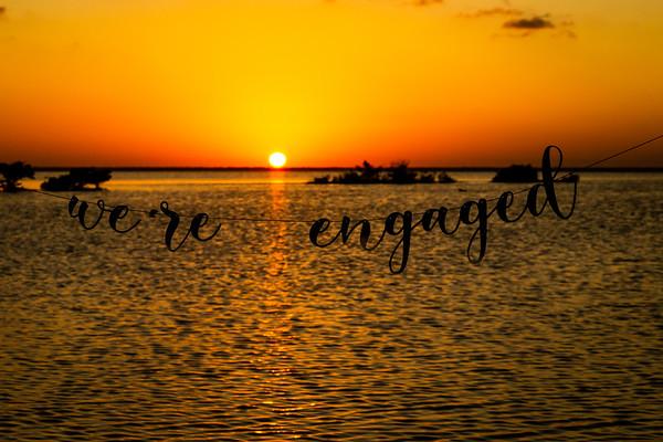 Engagement Zayra & David