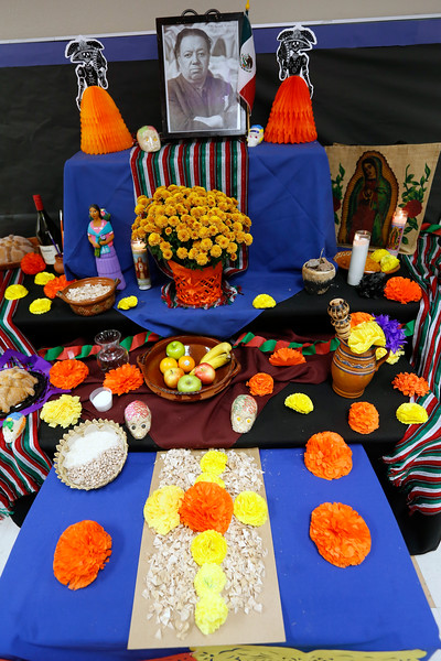 110118BrownMS-DayOfTheDead088 copy.JPG