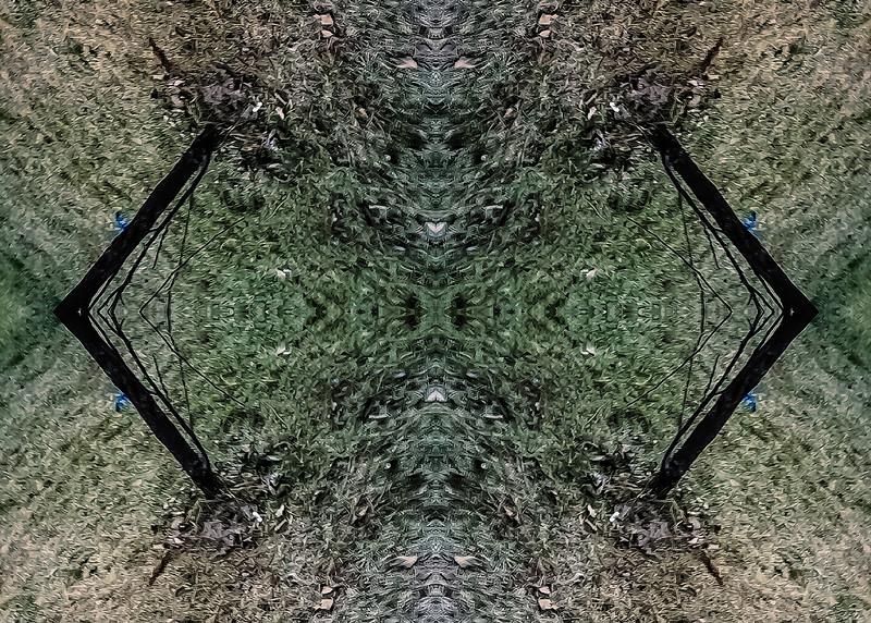 Mirror16-0018 5x7.jpg