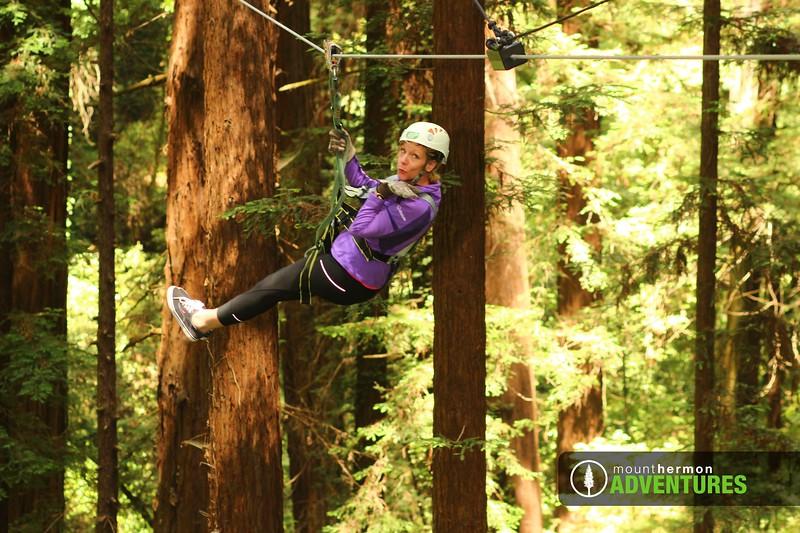 redwood_zip_1529098503664.jpg