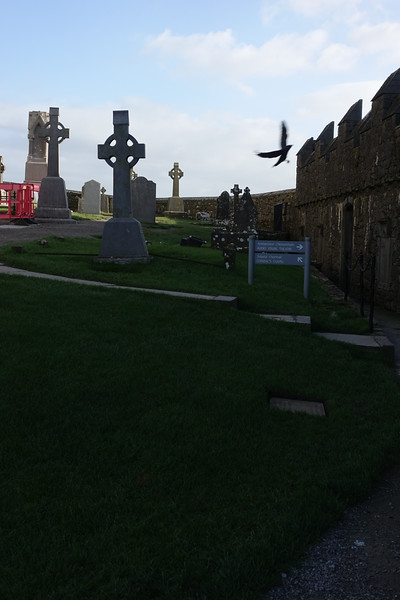 Rock of Cashel_Cashel_Ireland_GJP02095.jpg