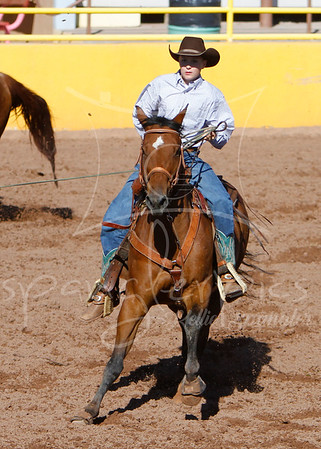 2014 4-H Horse Events