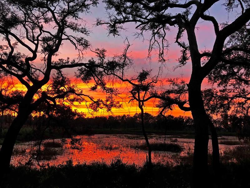 greenswamp sunset  lr 11  7 2018 IMG_7826_edit.jpg