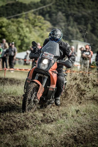 2018 KTM New Zealand Adventure Rallye - Northland (579).jpg