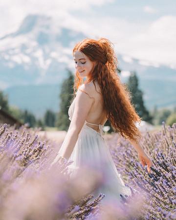 4 - Lavender Fields