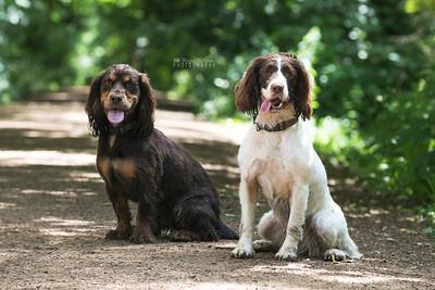 Frankie & Benny