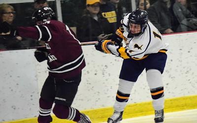 HS Sports - Cabrini Gabriel Richard Hockey 19