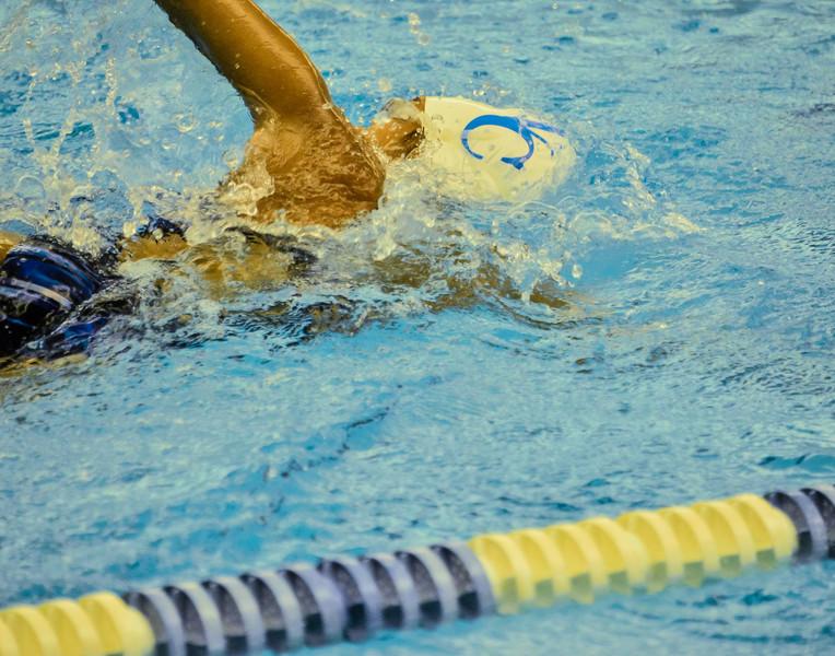 Swim Meet 11-09-13 (653 of 1544).jpg