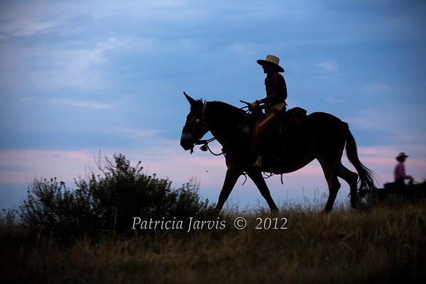 Parrish Cowgirls