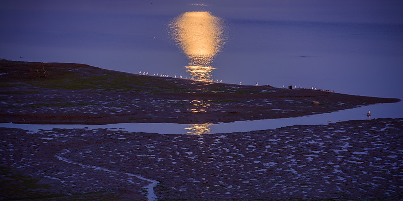 Super Moonrise over SaddleBack Newport Beach CA 03.jpg