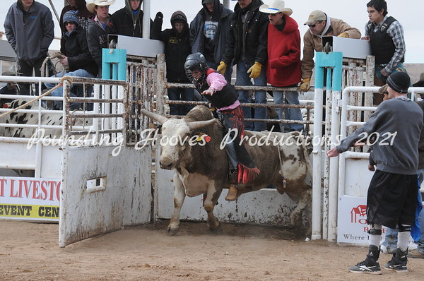 2-9-13 Sat Bulls