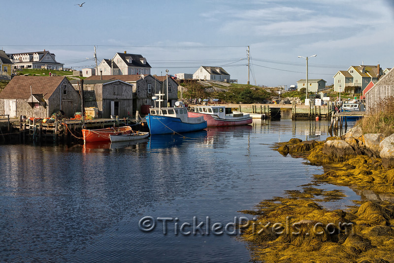 Harbour at Peggy's Cove