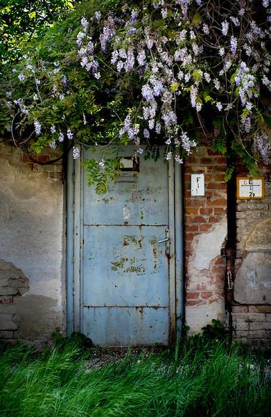 db doors41.jpg