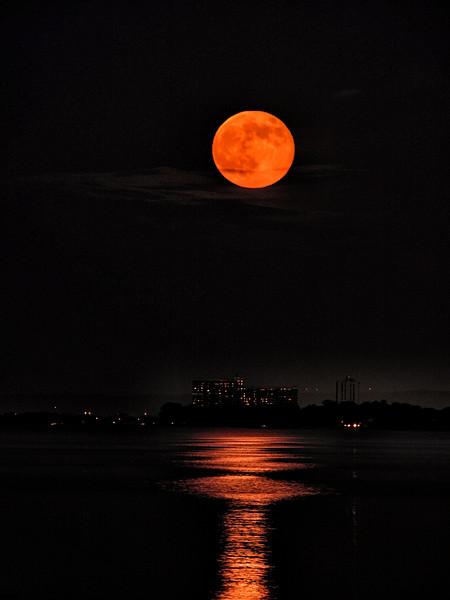 Super Moon _1090021.jpg