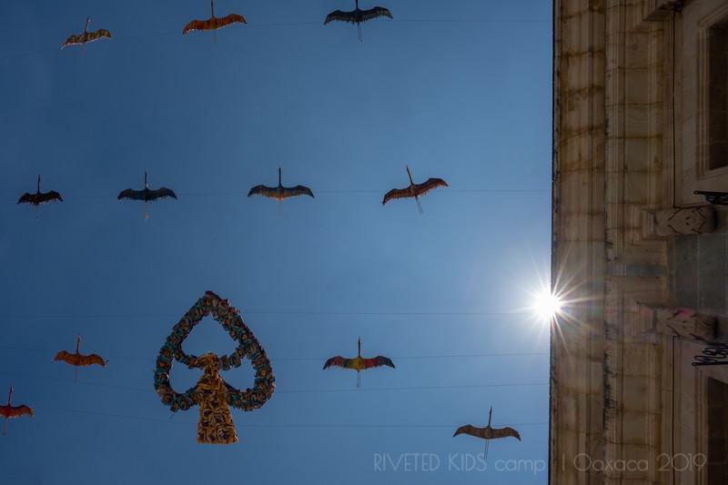 Jay Waltmunson Photography - Street Photography Camp Oaxaca 2019 - 008 - (DSCF8723).jpg