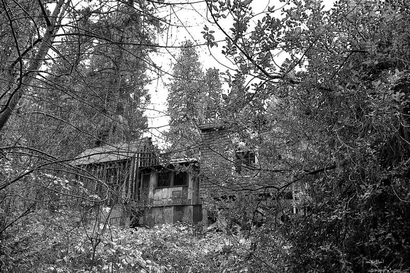 empty windows 3-19-2013.jpg
