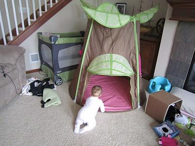 Maddie 7 Months Old