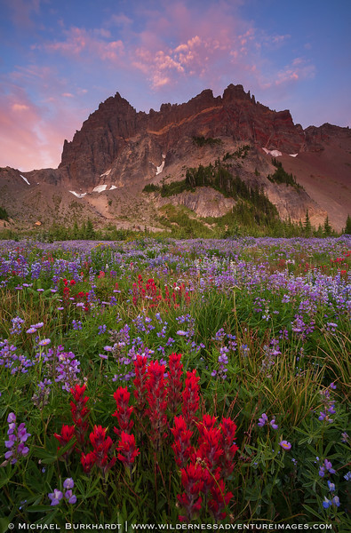 Canyon_Creek_Meadows_Wildflowers_Sunrise_152.jpg
