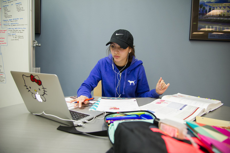 Lauren Jimenez works on her Anatomy assignment at the Mary and Jeff Bell Library.