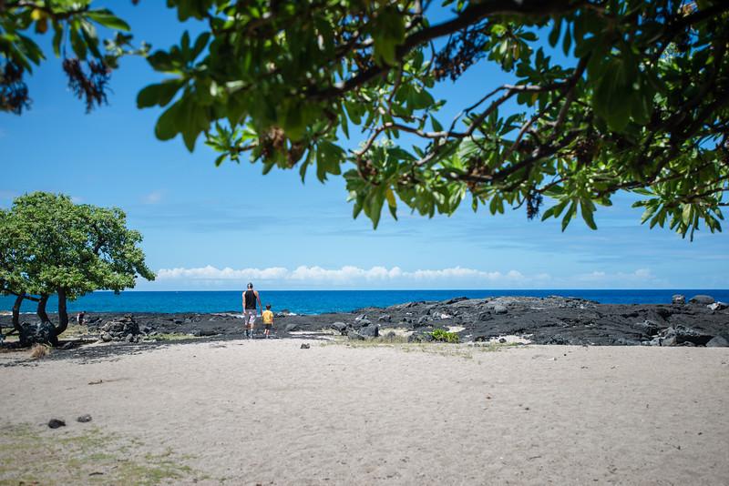 Hawaii2019-558.jpg