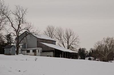Moracre Farm Fawn Grove