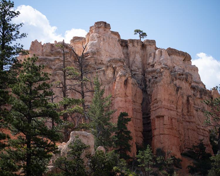 Bryce Canyon-26.jpg