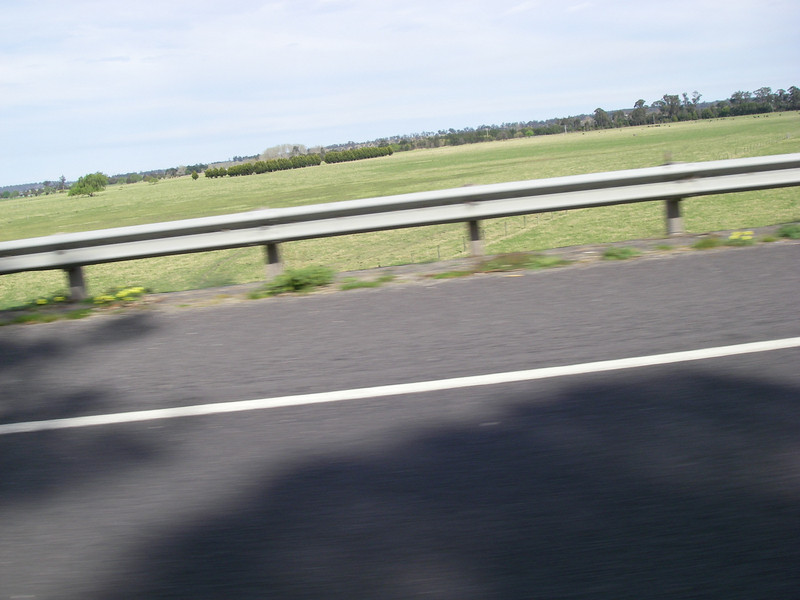 Sydney trip and Mirimbula 012.JPG