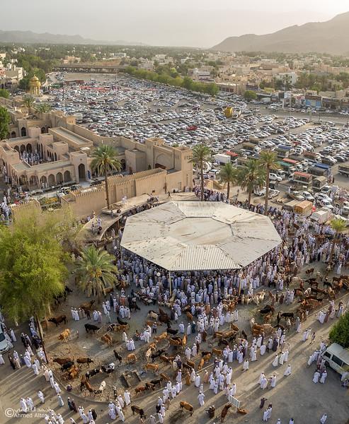 DJI_0034-Pano copy- Oman.jpg
