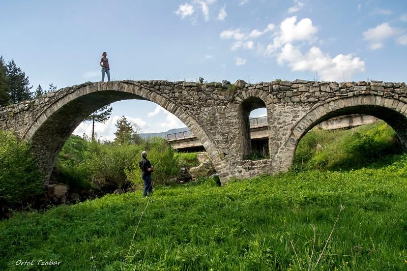 הנערה על הגשר.jpg