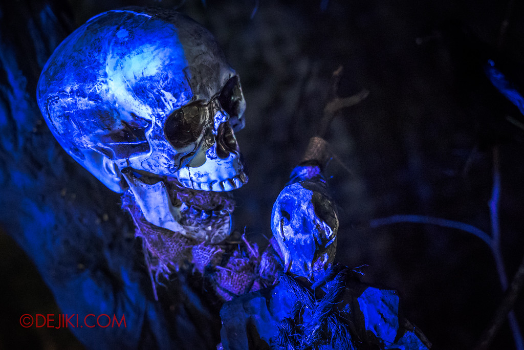 Halloween Horror Nights 7 - HEX haunted house / Skill and voodoo