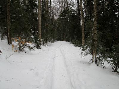 East Pond Trail snowshoe