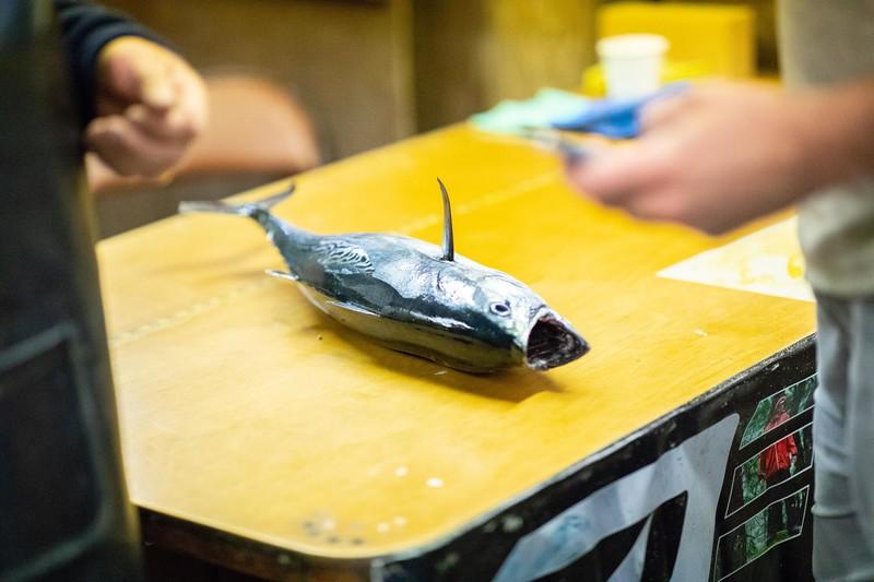 marthasvineyardderbyflyfishing.bcarmichael2018 (4 of 69).jpg
