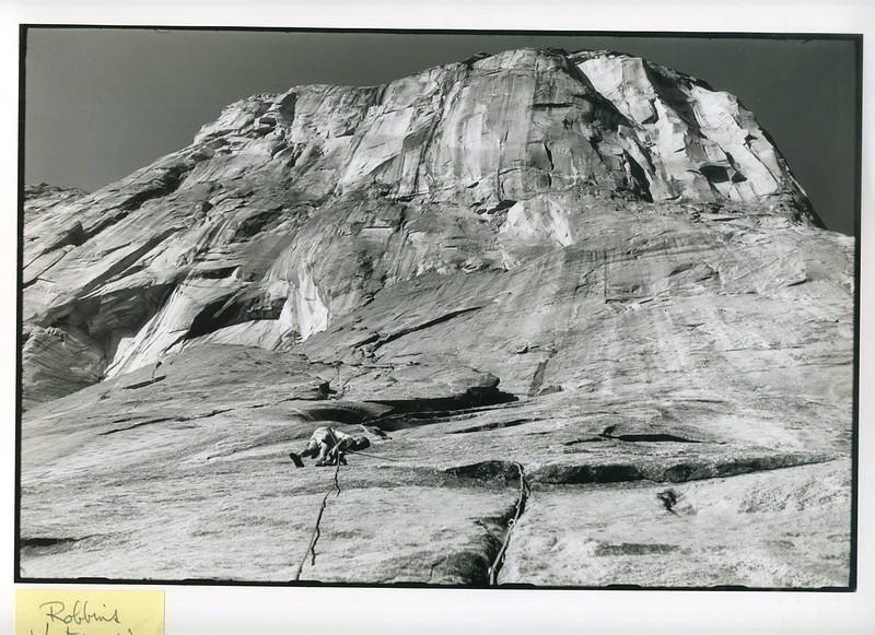 04 Robbins Ventures Up - El Cap Salathe Wall '61.jpg