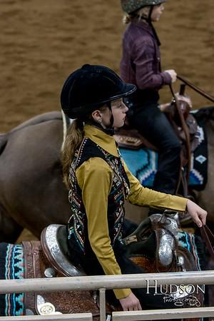 20 Western Pleasure Horse Jr