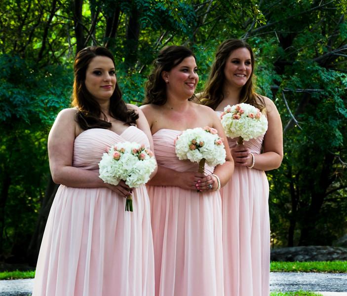 Andrew & Stefani Wedding Ceremony 2014-BJ1_5123.jpg