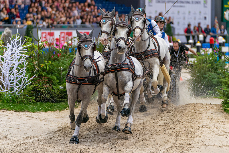 FEI Driving World Cup at CHI Geneva 2019